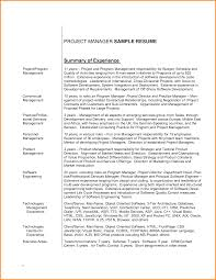 Resume Summary Examples Executive Assistant Sample Example Sales