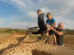 chandelier game lodge ostrich show farm feeding the baby giraffe s