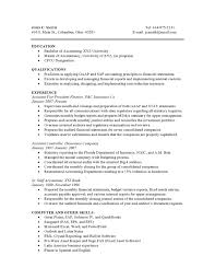 Combined Resume Functional Resume Format Example Examples Of Resumes Combined Resume 4