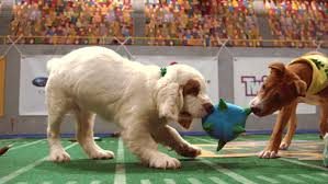puppy bowl 2015 halftime. Perfect Bowl Over The Years Puppy Bowl Has Introduced  With 2015 Halftime P