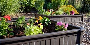 Backyard Raised Garden Designs Best Raised Garden Beds How To Build A Raised Garden Bed