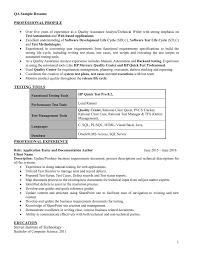 Qa Sample Resume 1 Professional Profile Testing Tools