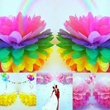 Paper Flower Balls To Hang From Ceiling Details About Tissue Paper Pompoms Pom Poms Balls Party Wedding Hanging Ceiling Decorations