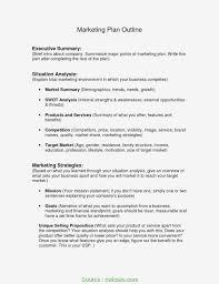 Executive Summary Outline 027 How To Write Situational Analysis Marketing Plan