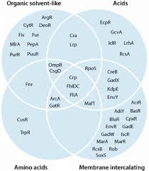 Compare And Contrast Renewable And Nonrenewable Resources Venn Diagram Venn Diagram Displaying Regulators With Significantly