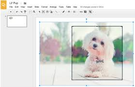 The mobile app for google docs will not allow you to create a. Google Slides Now Allows You To Edit Crop And Add Borders To Images Educational Technology And Mobile Learning