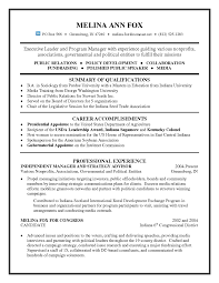 Executive Leader And It Program Manager Resume Sample Free
