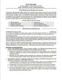 General Counsel Resume Examples Job Resume Examples