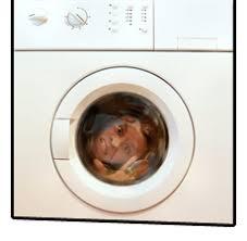 appliance repair plano. Contemporary Repair 972 9982664 With Appliance Repair Plano O