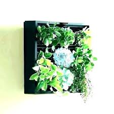 wall mounted planters outdoor wall hung planters mount planter hanging mounted plant holders medium plants outdoor wall mounted planters
