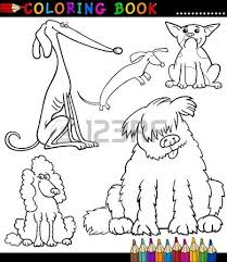 Small Picture 2728 Greyhound Stock Vector Illustration And Royalty Free