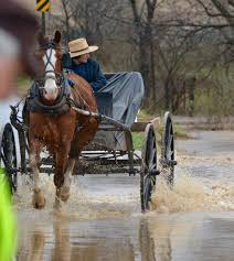 best amish images amish country country life amish buggy driving through flooded road