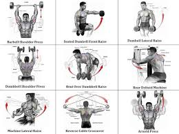 Shoulder Chart Workout Pin On Fit