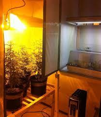 closet grow setup