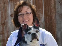 Cindy Purvis   VCA Manito Animal Hospital