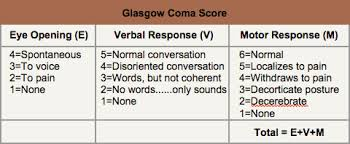 Gkascow Coma Scale
