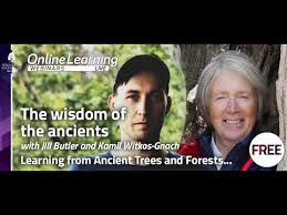 Webinar: The <b>Wisdom of the Ancients</b> - learning from ancient forests ...