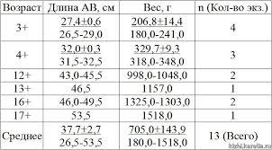 Исследования ихтиофауны щука окунь лещ Бюллетень  Исследования ихтиофауны щука окунь лещ Бюллетень экологических исследований за 2004 г Электронная библиотека Музей заповедник Кижи