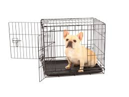 Double Door Pet Crate