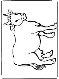 Koe 2 Huis En Boerderijdieren