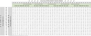 Bariatric Bmi Chart Bmi Chart My Bariatric Plan