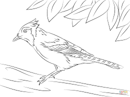 Small Picture Jay coloring pages Free Coloring Pages