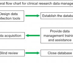 Clinical Data Management Flow Chart Clinical Project Management Plan Template Chart Trial Data