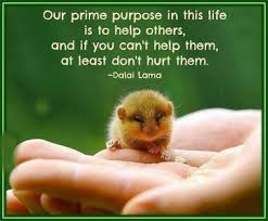 Quotes Purpose Of Life Custom Purpose Of Life Quotes Sayings Purpose Of Life Picture Quotes
