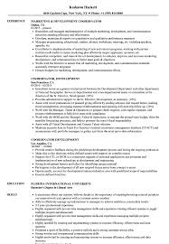 Coordinator Development Resume Samples Velvet Jobs