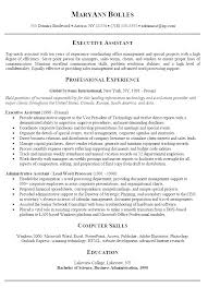 executive summary resume examples sample career summary for resume  marvellous executive summary resume example in professional