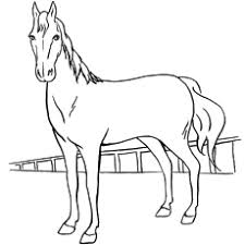 horse picture to color. Exellent Horse Belgian Horse Image For Kids To Color To Picture