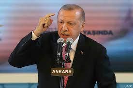 ما حقيقة اعتراف أردوغان بإرسال مقاتلين إلى مصر؟