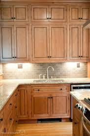 Red Birch Kitchen Cabinets Birch Cabinets Vs Maple Cabinets