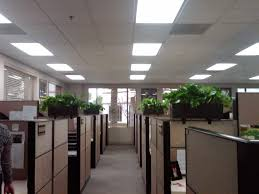 office cubicles walls. Our Designers Are Finding More Law Offices And Accounting Firms Lowering Cubicle Walls, Getting Executives Office Cubicles Walls