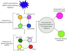 Flow Chart Of Oca 1 4 Gene Analysis Download Scientific