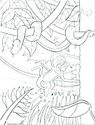 Rainforest Coloring Sheets Coloring Page Free Printable Rainforest
