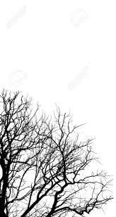 白い背景イラスト クリップアートの上の木の枝