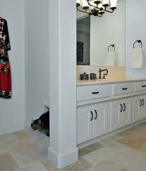 furniture to hide litter box. Hairy Kitty Litter Box Limestone With Cat Boxes Bathroom Mediterranean In Hidden Furniture To Hide