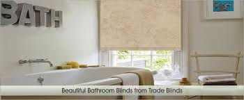 blinds for bathroom window. Blinds For Bathroom Window In Shower Treatments Windows Singapore