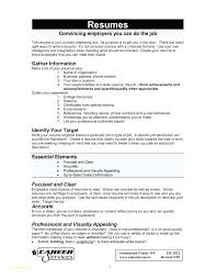 Free How To Write A Resume Resume Letter Collection