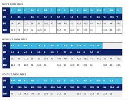 Asics Size Chart Asics Mens Gel Cumulus 20