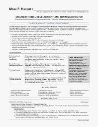 Career Focus On Resumes Career Focus Resume Examples Objective Sample A Resume Elegant