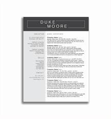 Retail Sales Executive Resume Resume For Retail Jobs Sample Resume Retail Sales Supervisor New