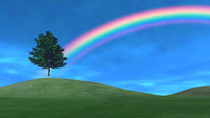 spring day tree and rainbow