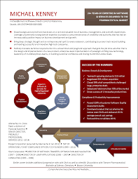 Infographic Resume Examples Samples Value Profile Create Visual
