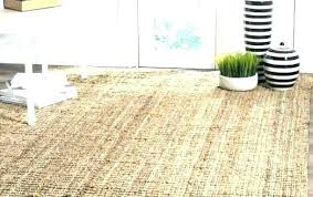 solid sisal rug pottery barn impressing of