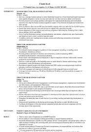 Human Resource Resume Sample Director Hr Business Partner Resume Samples Velvet Jobs