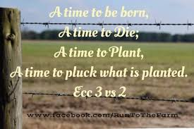 Farming Quotes Run To The Farm Pinterest Farm Quotes Quotes Extraordinary Farming Quotes