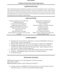 It Manager Resume Objective Marketing Director Resume Objective