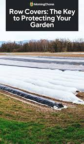 when to use row covers